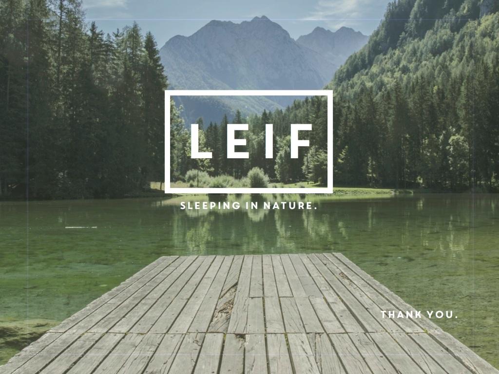 leif-final-presentation-branding-subgroup-d2